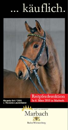 Marbacher Reitpferdeauktion