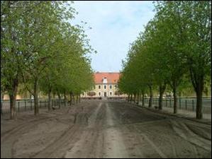 Landgestüt Neustadt Dosse